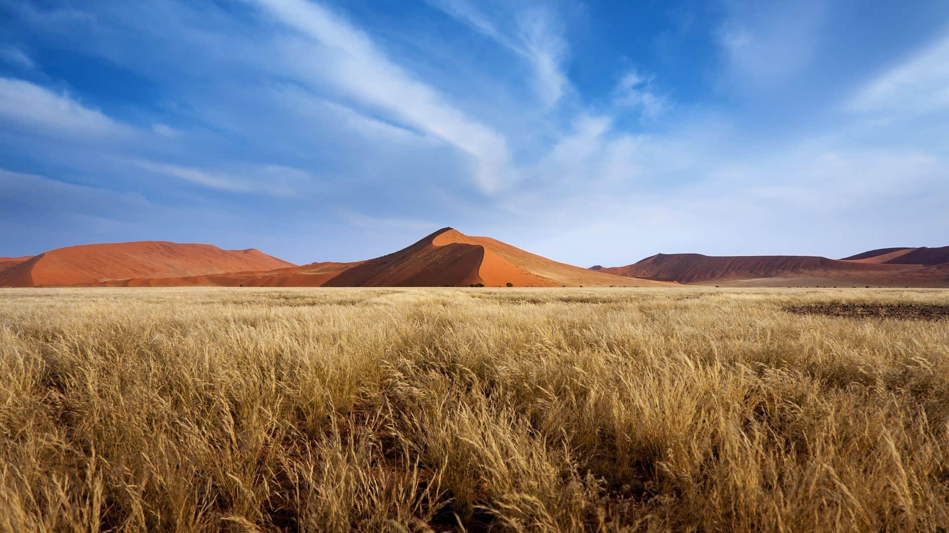 Dunas rojas de Sossusvlei en Namibia