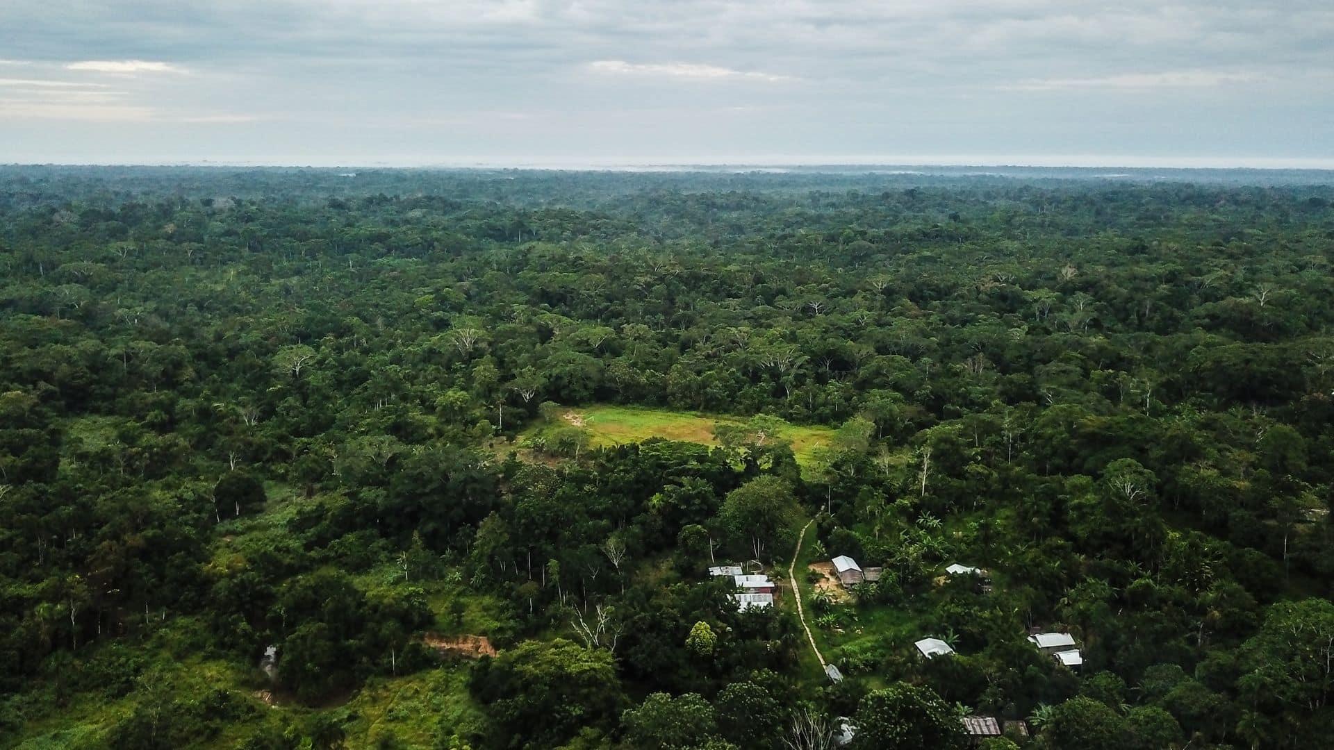 Vista del Amazonas en Colombia